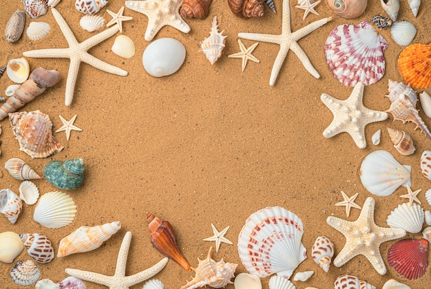 배경 조개와 불가사리 해변 모래에