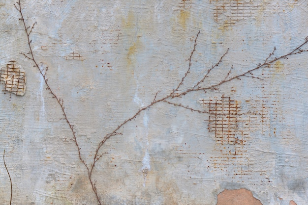 The background of the shabby wall with gratings.