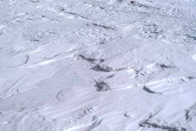 배경 - 산의 경사면에 있는 전나무 들판(빽빽한 눈)의 표면