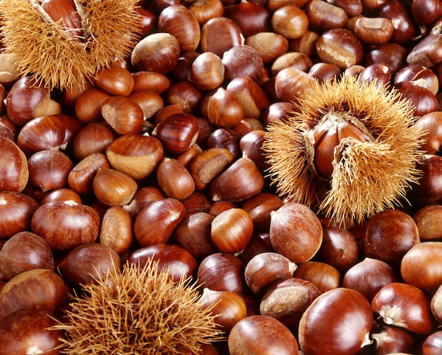A background of sweet chestnuts