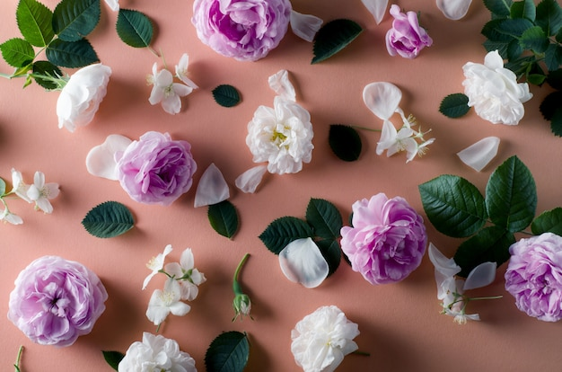 Background of tea roses flowers on a gentle pink background. flat lay template.