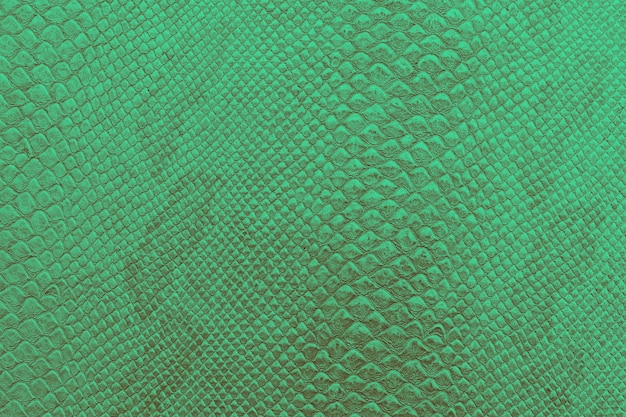 Background texture of bright green snake skin