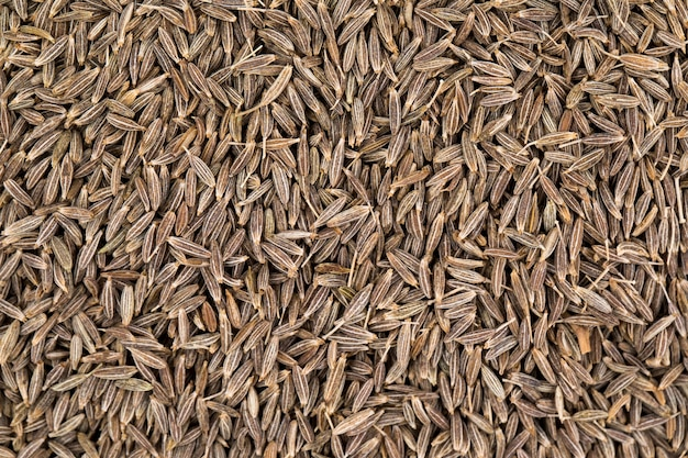 Background texture of dried cumin seeds