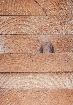 Background texture. ends of stacked edged boards. top view. copy space, vertical
