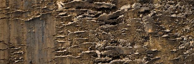 砂と土の緩い表面からの背景のテクスチャ。上面図。バナー