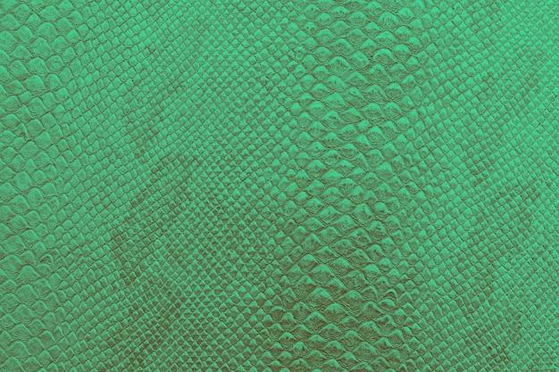 明るい緑のヘビの皮の背景の質感