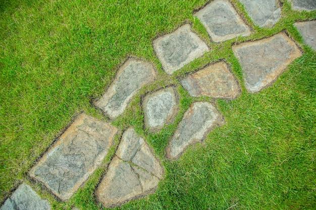 배경 질감, 잔디에 둥근 돌이 늘어선 잔디밭의 경로