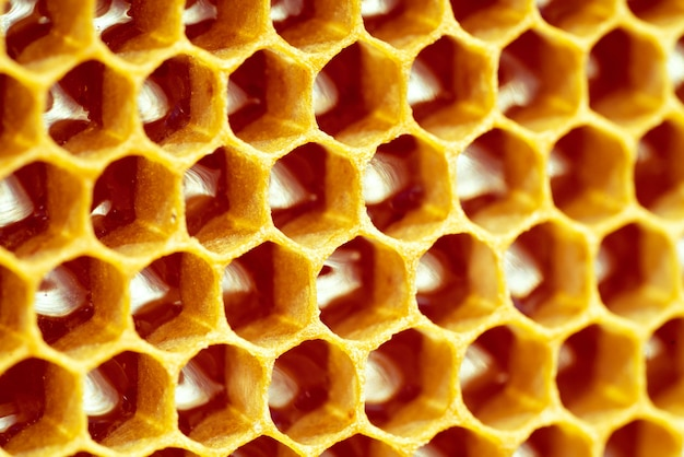 Background texture and pattern of a section of wax honeycomb from a bee hive filled with golden honey