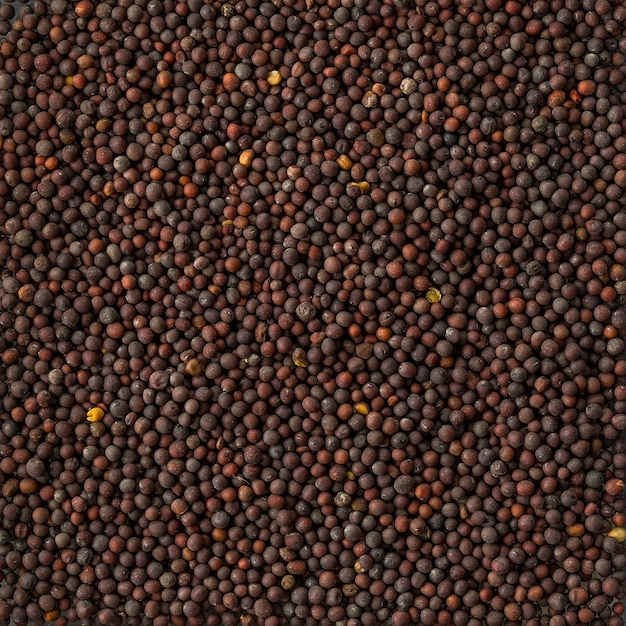 Background texture of a pile of black mustard seeds,