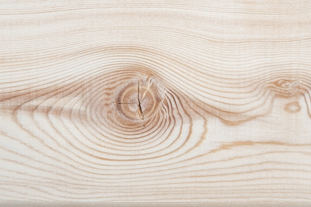 Background texture. surface of a larch edged board with knot on cut. wood texture. top view. copy space.
