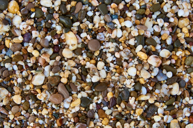 Background texture of wet multicolored stones on the beach.