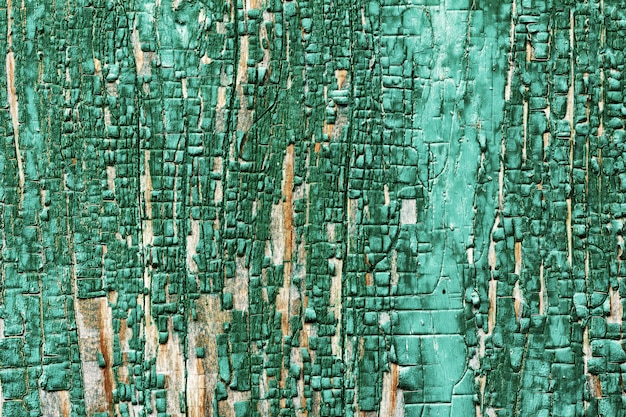 Background texture of wooden barn board faded remnants of the old green paint