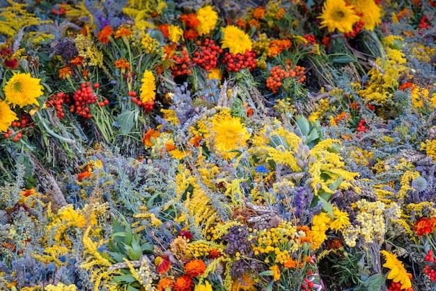 Фон различные травы и цветы цветут, с фильтром
