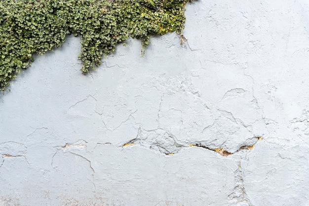 Концепция стены фон с копией пространства