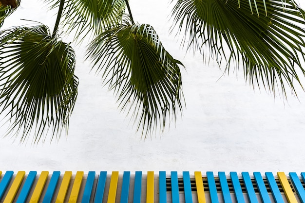 Background of a wall with colorful painted boards and framed by palm leaves.