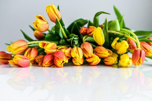 노란색, 주황색, 빨간색 튤립 꽃다발과 배경. 평면도. 공간 복사