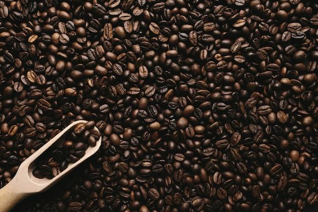 건조 커피 원두와 숟가락의 배열과 배경