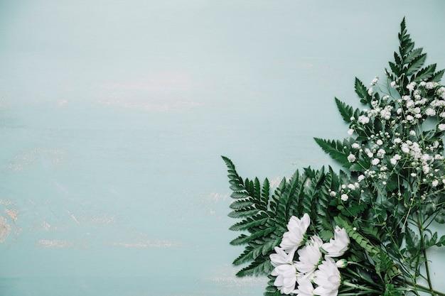 Фон с большими листьями справа