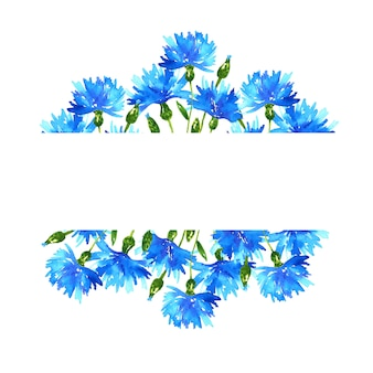 Background with cornflowers. frame with blue beautiful flowers. hand drawn watercolor illustration. isolated.