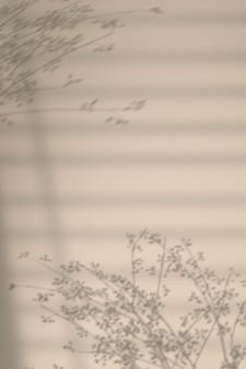 花の枝と窓の影の背景