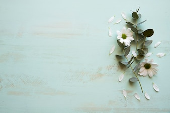 Background with flower on right
