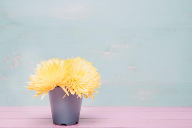 ポットの花の背景
