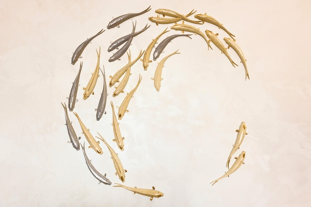 동그라미에서 수영 하는 금색과 은색 물고기와 배경. 창의성과 디자인을 위해 석고로 만든 장식용 물고기.