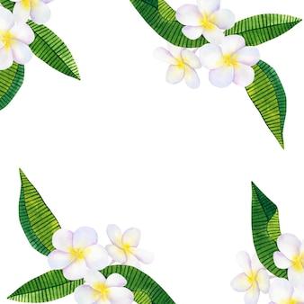 緑の熱帯の葉とフランジパニまたはプルメリアの背景。手描きの水彩イラスト。孤立。