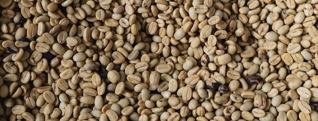 천연 커피 콩 배경입니다.
