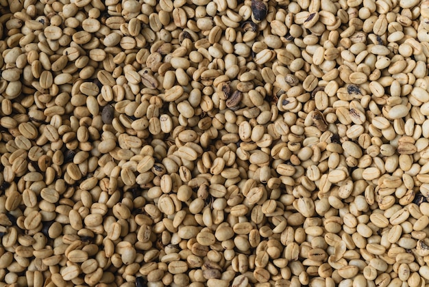 Background with natural coffee beans.