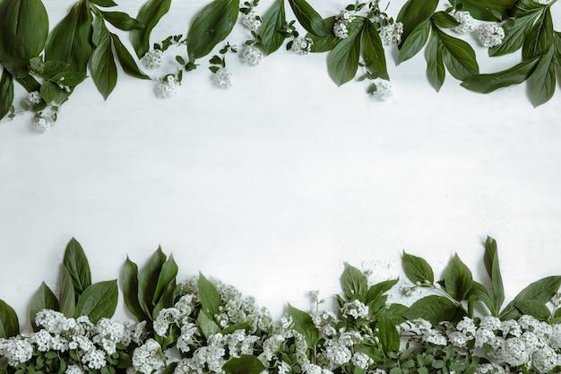 Sfondo con foglie naturali e rami di fiori isolati