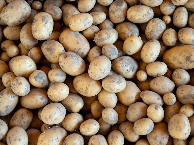 감자, poatoes 텍스처와 배경