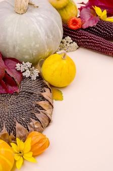 カボチャ、黄色と赤の紅葉と背景