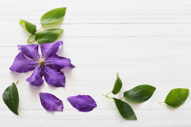 Background with purple clematis