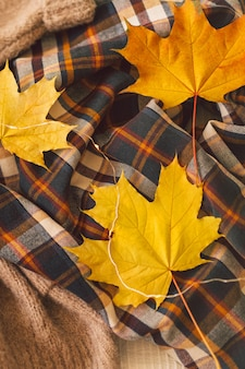 Background with warm sweaters knitted clothes with yellow autumn leaves warm background