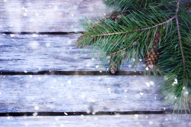 Background of wooden boards decorated with pine tree branches in snow.