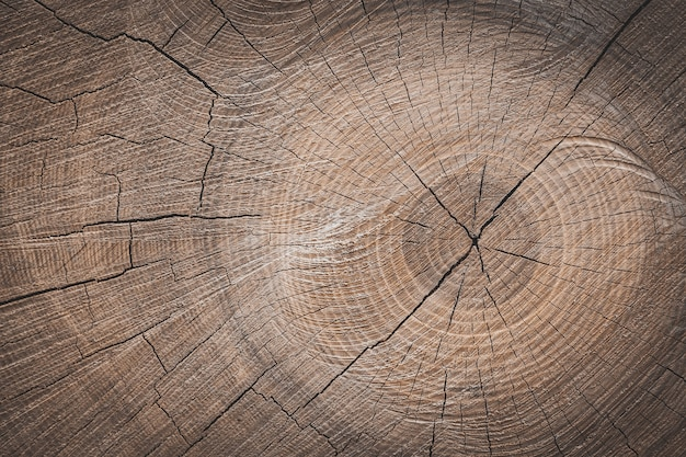 A background of a wooden stump