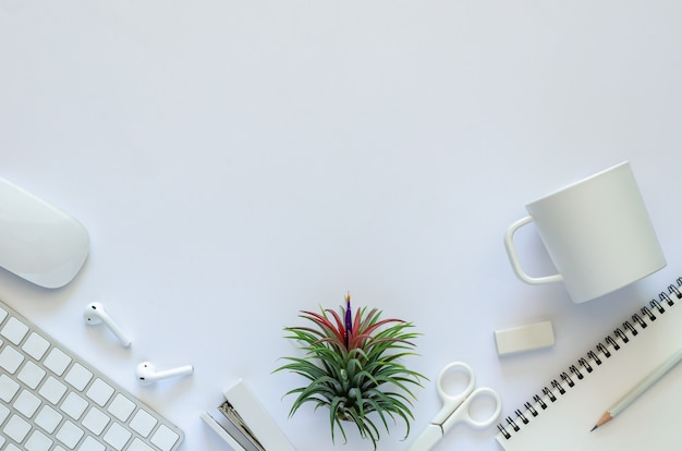 Background of work space concept with air plant tillandsia and office stationery on white background.