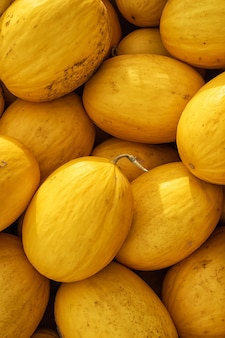 Background of yellow melons summer fruit pattern