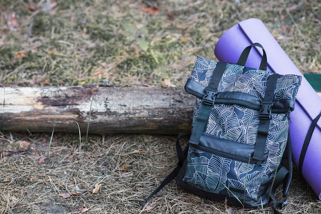 Backpack and tourist mat near log