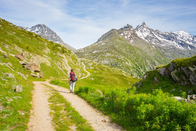 Backpacker hiking in idyllic landscape. summer adventures and exploration on the alps, through blooming meadow and green woodland set amid high altitude mountain range