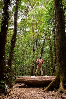 Backpacker standing on tree trunk in forest