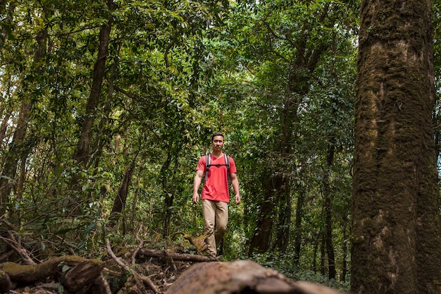 Backpacker in wild forest