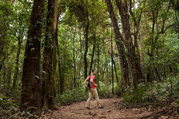 Backpacker на пути в джунглях