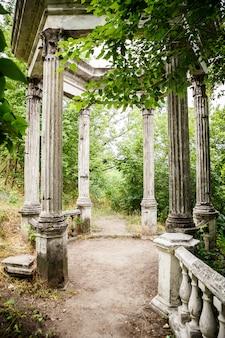 Backyard garden with narrow road to the arbor
