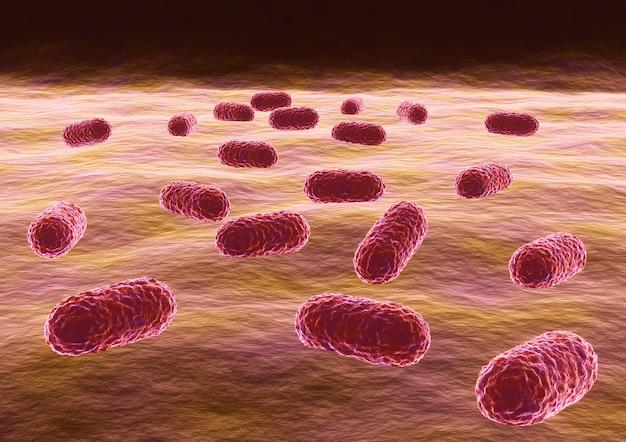 Бактерии acinetobacter baumannii, бактерии, устойчивые к антибиотикам.
