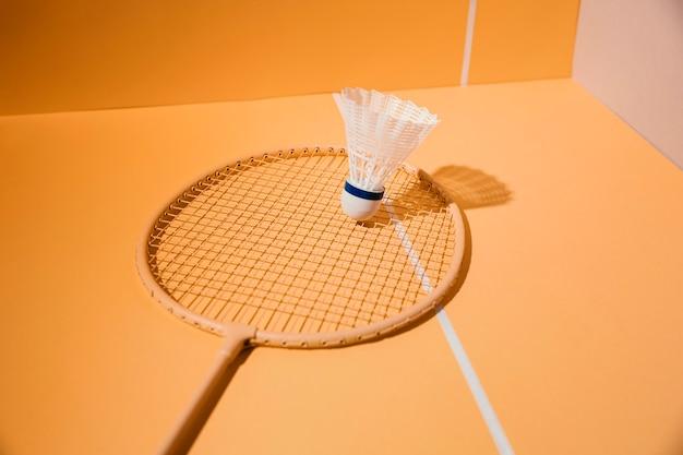 Badminton racket and shuttlecock assortment