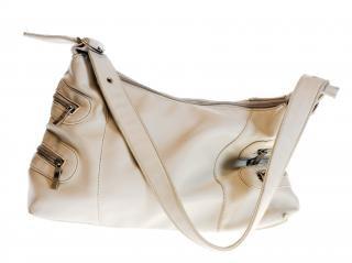 Bag   cloth