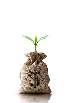 Обрезка сумок для экономии денег, концепция инвестиций в бизнес