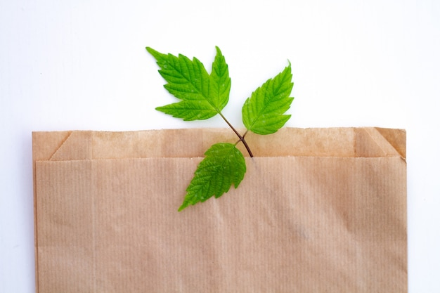 Bag made from recycled kraft paper. eco concept, ecology care. rejection of plastic products.